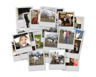 2006.01.10-21.47.54/collage4.jpg